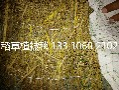 山坡绿化椰丝毯膨润土防水毯生态毯抗冲生物毯植被毯植草毯图片