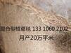 植被毯生态毯防风固土环保草毯椰丝毯麻椰固土毯矿山修复
