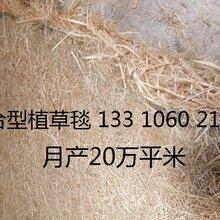 加筋植生毯生态毯环保草毯护坡绿化植被毯椰丝毯抗冲生物毯厂家