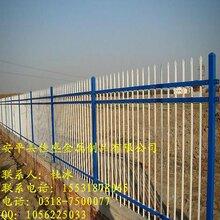 草坪园林绿色防护铁艺围栏市政安全隔离网生产厂家图片