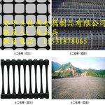 钢塑土工格栅路基防护格栅网黑色塑料网生产厂家