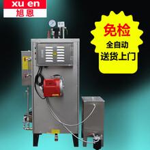 旭恩50kg燃油锅炉柴油小型服装厂立式燃甲醇锅炉商用蒸气发生器全自动
