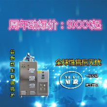 旭恩免检100KG生物质蒸汽发生器加盟