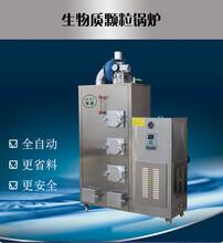 旭恩专用80KG生物质颗粒蒸汽发生器批发
