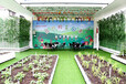 校园楼顶菜园