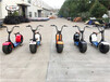 浙江台州哈雷电动车生产厂家招商加盟艾普仕赛夫沃趣同款