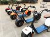 艾普仕赛夫沃趣同款哈雷锂电电动车浙江台州生产厂家直销