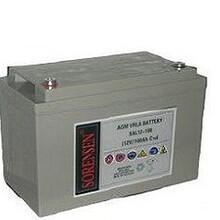 原装索润森蓄电池SAA2-200美国索润森官方售价