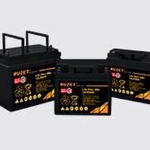 路盛蓄电池12LPA120法国路盛蓄电池在线咨询价格