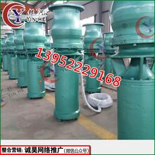 混流泵型号选型价格,混流式潜水泵生产厂家公司图片