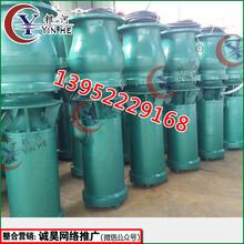 江苏徐州HW混流泵厂家直销各种型号轴流泵混流泵图片