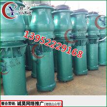 HW混流泵流量大效率高可靠稳定专业厂家图片