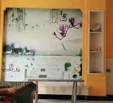 墙衣,硅藻泥,液体壁纸,内墙装修图片