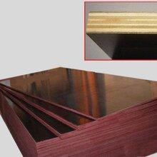 聊城竹胶板多少钱/竹胶板规格尺寸/竹胶板厂家批发图片