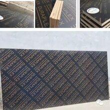 济南竹胶板多少钱一张/竹胶板尺寸多少/杨木板厂家直销现货供应图片