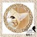 猫砂哪种好猫殿下猫砂cature猫砂新材料猫砂盒装猫砂松木猫砂