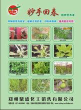 抑制病毒病、解除农药药害除草剂残留促生长好农药
