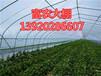 天津建大棚139-2028-6607
