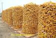 友旺电焊网厂供应泰来大丝圈玉米电焊网,电焊网批发