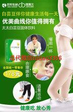 减肥瘦身白芸豆固健康体饮品思埠出品招代理