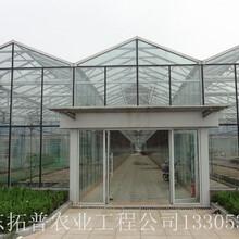 智能溫室大棚、蔬菜大棚圖片