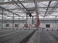 建温室大棚首选专业的山东拓普农业工程公司图片