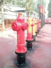 平凉地上式泡沫栓(电话)图片