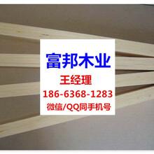 上海包装板上海LVL胶合板包装板LVL板材图片