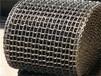 山东专业制造不锈钢马蹄链速冻机网带来图定制
