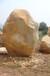 全国供应大型园林景石黄蜡石太湖石假山石鹅卵石台面石