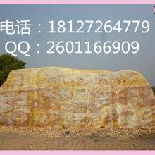 恒大园艺老品牌景观石黄蜡石图片
