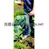 长春土壤水分温度测试仪优势体现