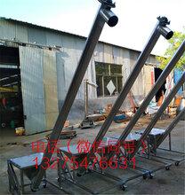 型號多樣蛟龍上料機不銹鋼螺旋提升機曲阜廠家生產圖片