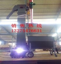 洛阳大功率耐高温斗式提升机供应商图片