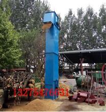 宜宾大豆装罐无破损提升机高效节省干燥剂上料机生产厂家图片