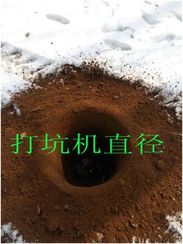石河子光伏挖坑机柴油挖坑机操作简单