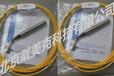 WE700温度传感器美国GlobalWater中国总代理现货供应