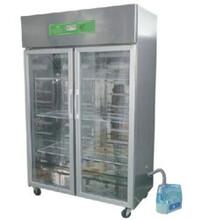 霉菌培養箱,智能霉菌培養箱,智能霉菌培養箱特價供應,億鑫儀器圖片