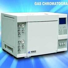 水质农残检测色谱仪,气相色谱仪供应,GC9310气相色谱仪图片