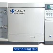 天然气专用气相色谱仪,国产气相色谱仪,GC9310图片