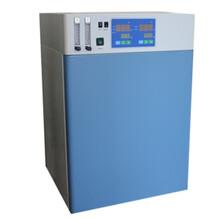 二氧化碳培養箱,BPN系列,二氧化碳培養箱參數圖片