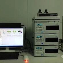 嘌呤堿檢測專用高效液相色譜儀圖片