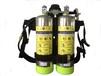 背负式超细干粉灭火装置-消防广西锐盾科技厂家直销