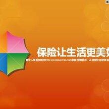 寿险的五项条款代理人刘威