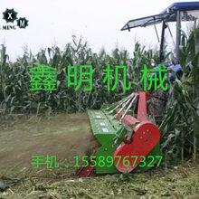 小型玉米秸秆还田机粮食秸秆灭茬机玉米秸秆粉碎还田机