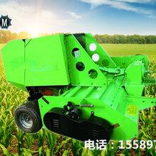 侯马玉米秸秆收割粉碎打捆机青贮秸秆收割打捆机