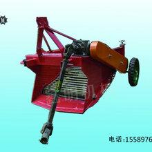 桦甸薯类带秧收获机厂家直销自动分离破皮率低红薯收获机