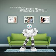 济宁热销阿尔法机器人、跳舞机器人