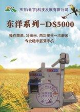 韩国原装220家用电器进口鲜米机设备