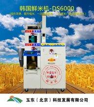 韩国鲜米机家用电设备自动售米机设备